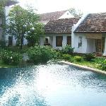 The pool, pond and cottage