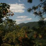 Roan Mountain Region 1