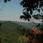 Roan Mountain Region 2