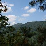 Roan Mountain Region 5