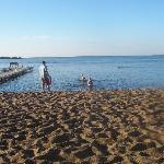 Lake Bemidji-Hampton Inn beach