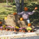 Pumpkin People - BestWestern Waynesville