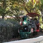 A train that goes around the park