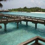 maldives fullmoon