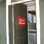 Kitty Room