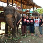 elephant team members with LoongSap