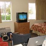 TV and bed area