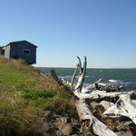 Driftwood & old fishing shacks on the Bay of Fundy shore