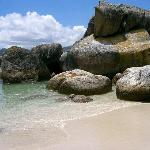 Nearby Boulders Beach