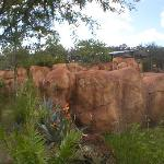 Rhino carving in rocks