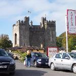 the Castle and Dirty Nellys