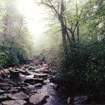 Alum Cave Trail