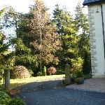 The gardens around the house