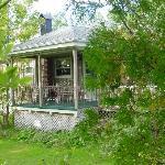 Cottage yard view