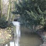 Stream running through park adjacent to hotel