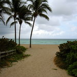 Surf Road beach entrance-Flowers Section