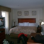 Our Suite - 221