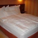 Foto de Hotel AnyosPark