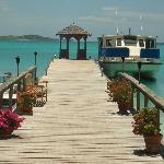 The main dock