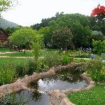 The lodge gardens