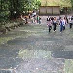 Green coloured stone steps, Ise Jingu