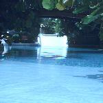 favourite pool