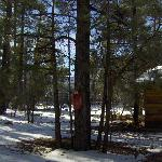 Whispering Pines Resort Foto