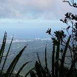 view from el yunque to Playa Azul