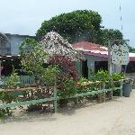 King Kassava Bar