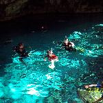 Snorkeling in a Cenote (Very cool)