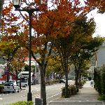 Shimoda in autumn end Oct