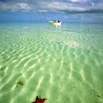Photo de Rickmon Bonefish Lodge
