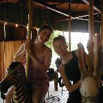 Gage Park Carousel