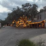 Historic Micanopy lights at Christmas time