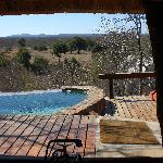 Suite - Vista dall'interno della camera sulla piscina privata e sulla savana
