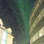 Northern Lights outside the Clarion Hotel Bryggen, Tromso