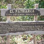 The Spanish sign I can't read
