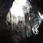 Hole in the ceiling with roots hanging down