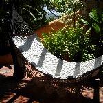 hammock in the garden room
