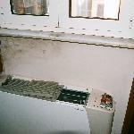 Hotel Del Corso-filthy room, peeling wallpaper, mold