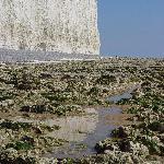 Chalk Cliff from Birling Gap