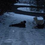 Kids Enjoying the snow at the cabin