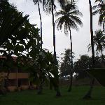 Foto de Coconut Inn