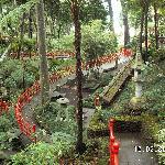 Ausflug Botanischer Garten