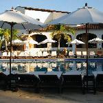 stunning pool decor