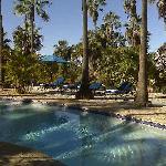 Hacienda Todos Santos Pool
