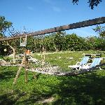 Tropical Dreams Backyard-Hammocks
