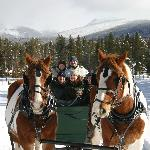 Devil's Thumb Ranch Sleigh Ride - 1st class operation!