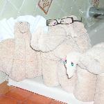 Our towel friends