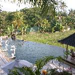 from the yoga area  salt pool and rice paddy